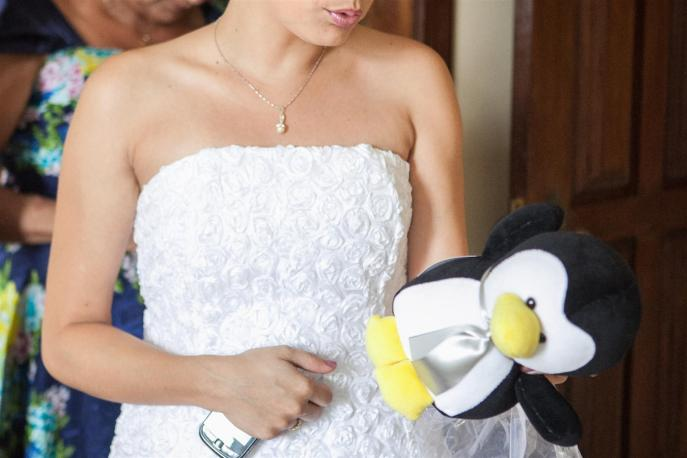 O pinguim do amor